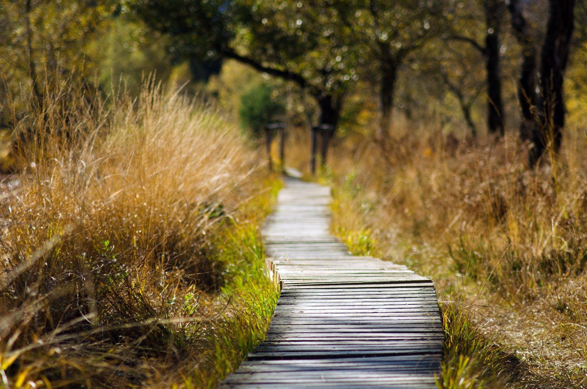 5 tips: balans tussen werk- en privezaken